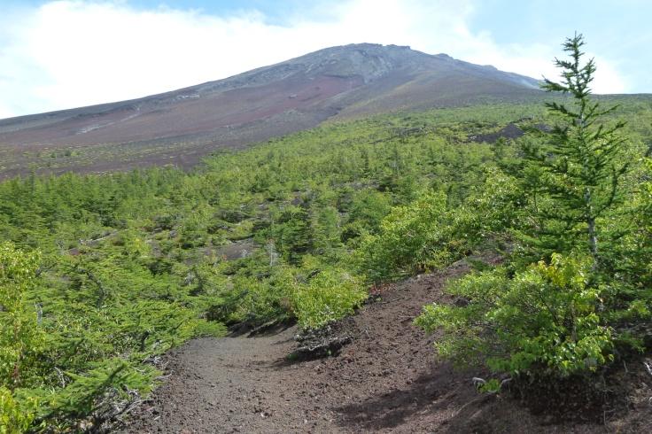 D:\My Pictures (原紙)\ポストカード用\富士山お中道・奥庭 2015.09.05\1.お中道から見上げる富士山.JPG