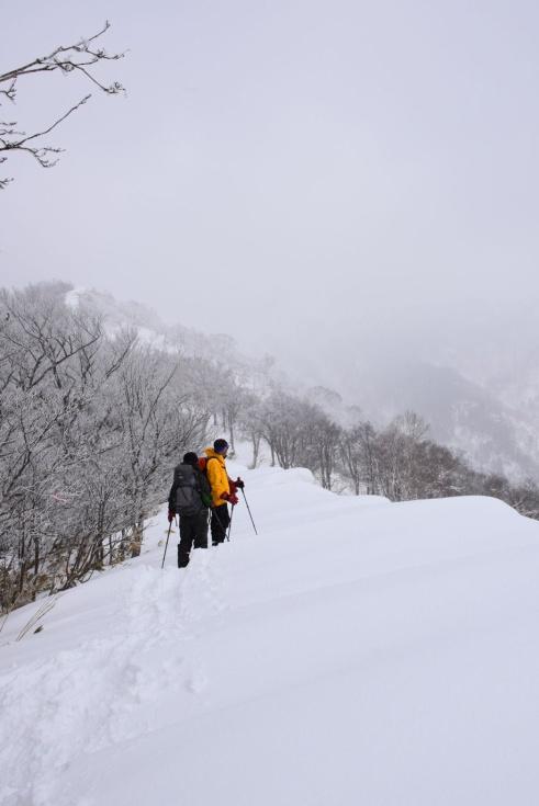 11_たんばら高原スノーハイク