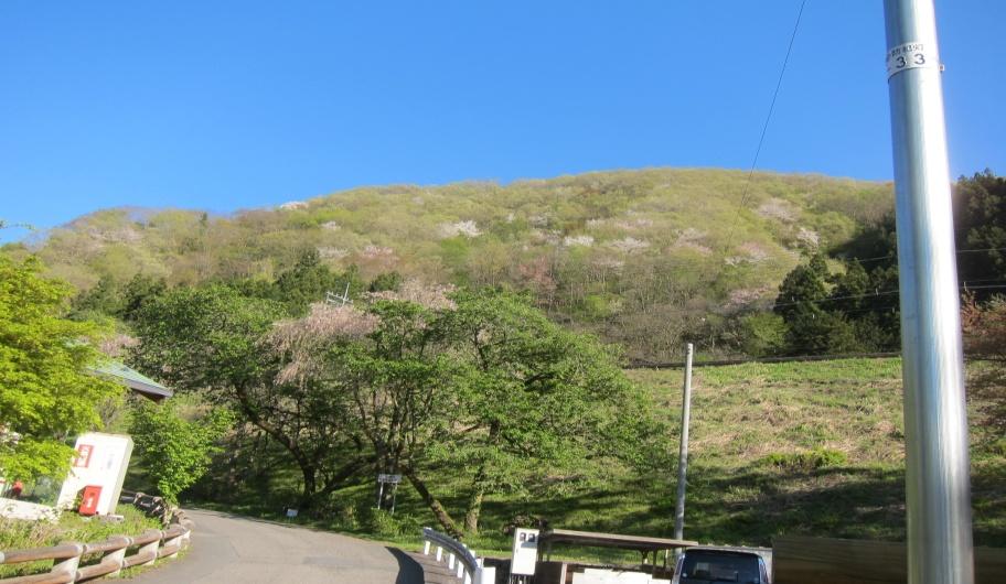 武川岳IMG_9576