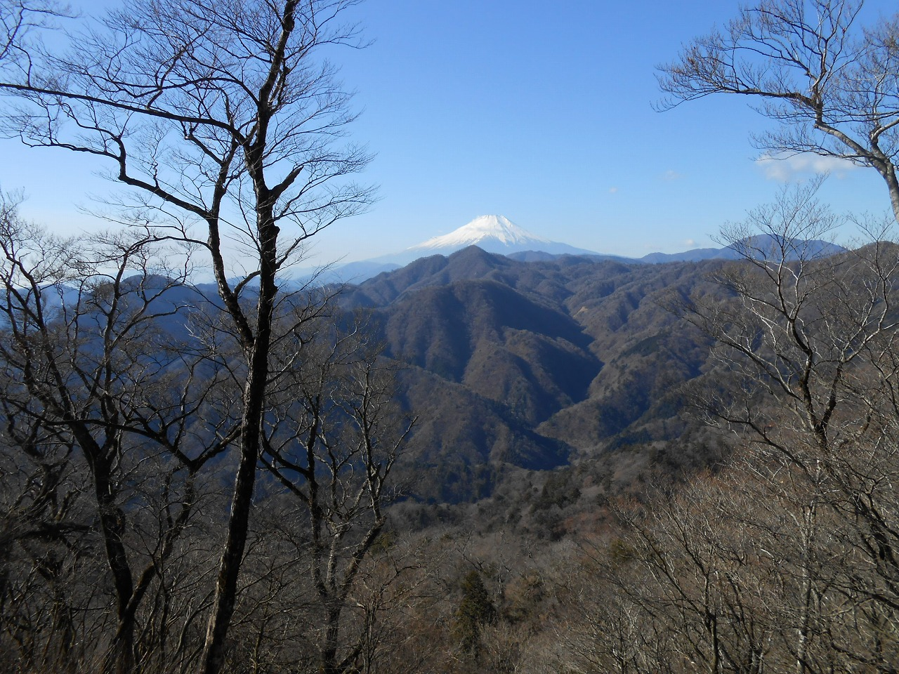 C:\Users\SuzukiShigehiko\Documents\横浜ハイキングクラブ\丹沢\大室山\180113\DSCN2225.jpg