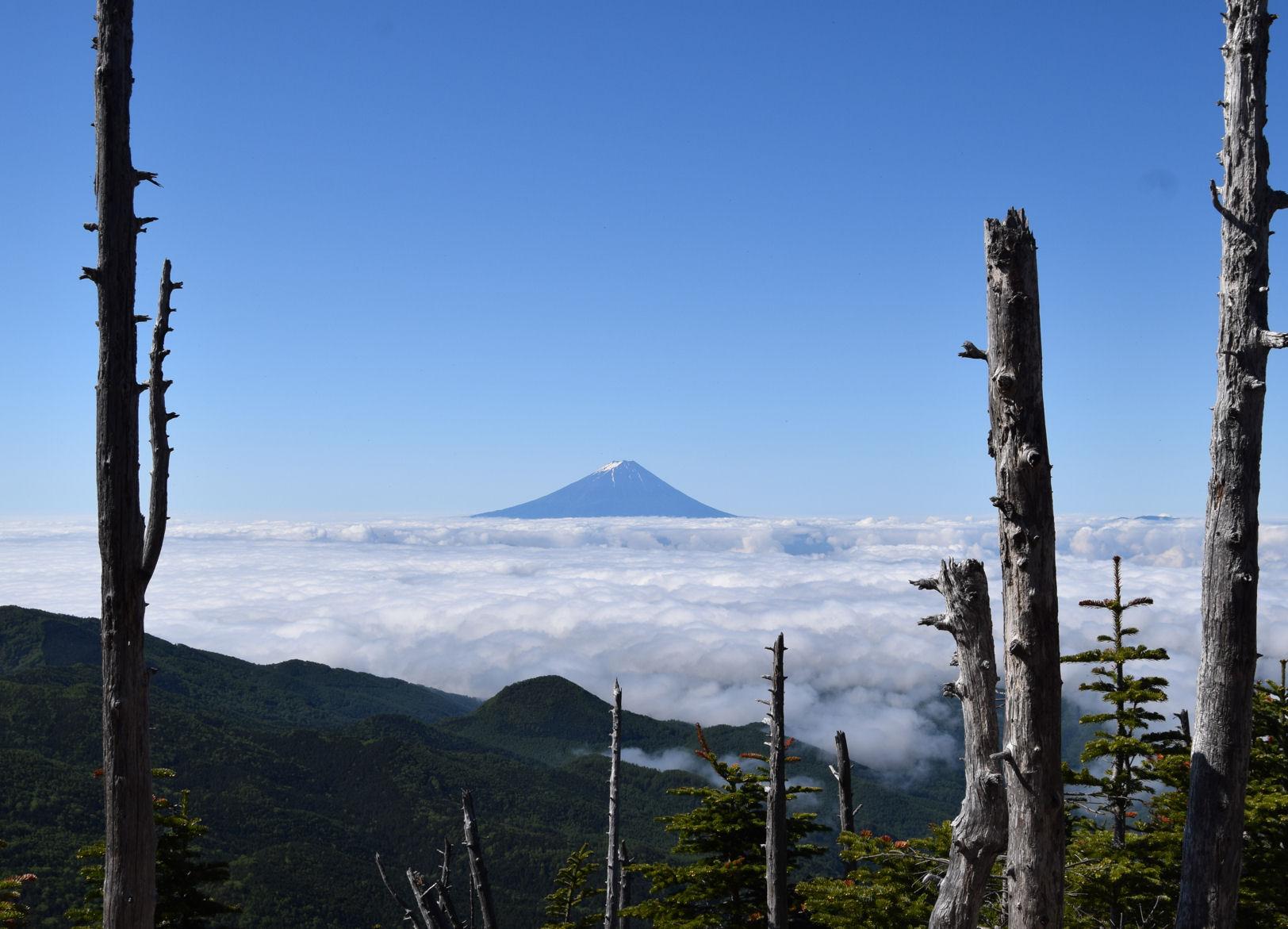33_金峰山山頂近く_富士を望む.JPG