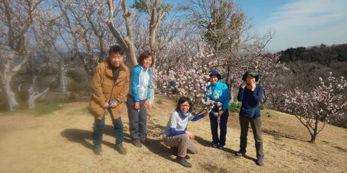 木のそばに立っている子供たち  低い精度で自動的に生成された説明