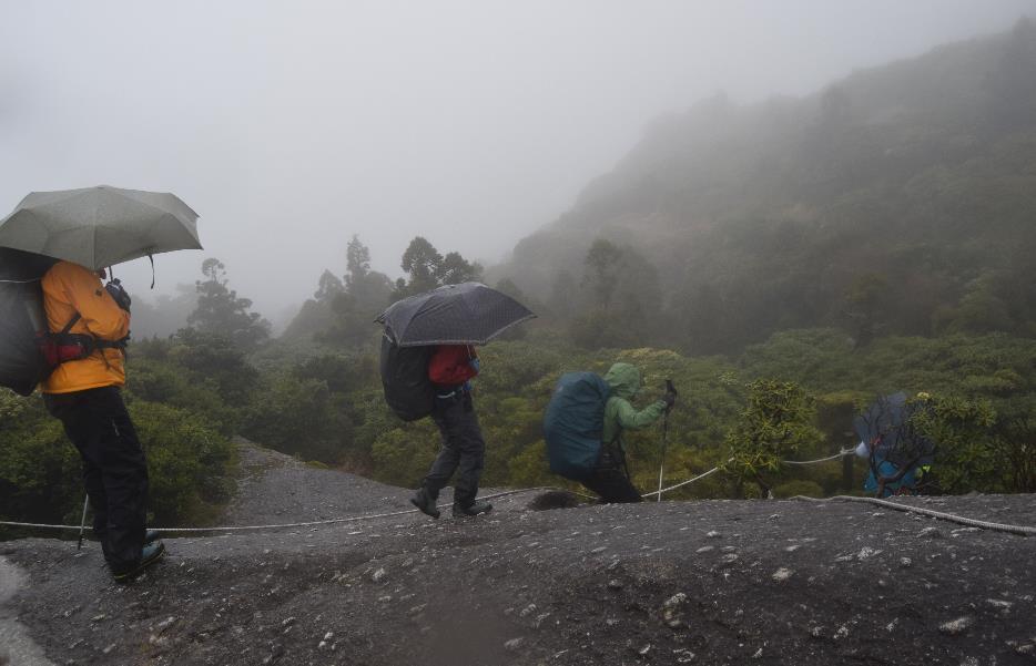 山の中で傘をさして歩く人  中程度の精度で自動的に生成された説明
