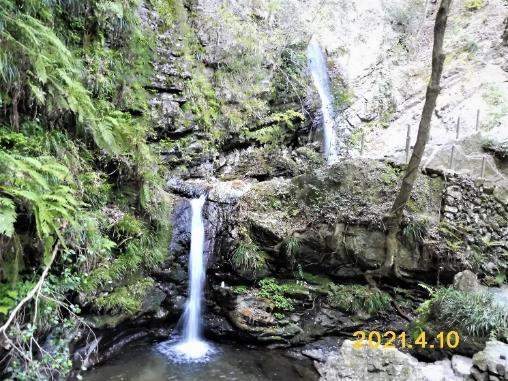 森の中にある滝  自動的に生成された説明